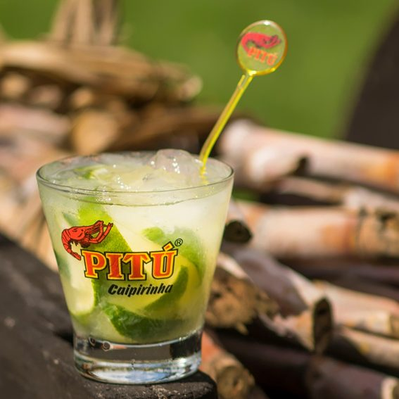 Do you know the origin of caipirinha?